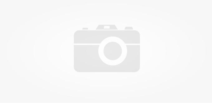 ID – Diploma, Pasaport, Vize, Legitimatii etc.